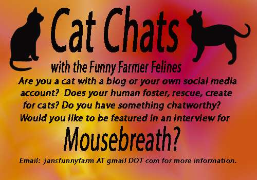 Cat Chats_resized