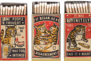 Got a Match? Hooligan Cats as Art…