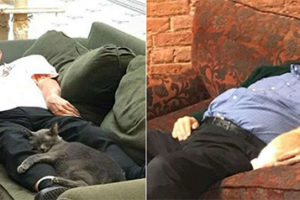Napping Cat Man Photos Go Viral