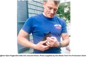 Hot Hunky Firemen Rescue Wee Kitten