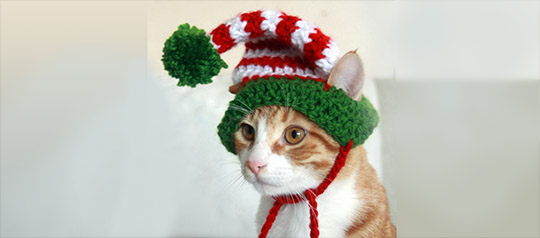 Can You Live Without This Elf Hat?