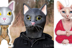 Come for the Squirrel Underpants. Stay for the Cat Masks.