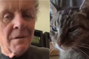 Anthony Hopkins' Own Piano Cat
