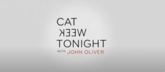 Cat Week Tonight with John Oliver