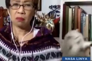Catfight Ensues During Reporter's Live Zoom Report