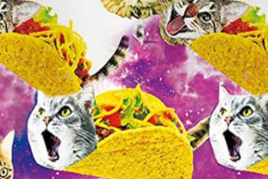 Wanna Be a Taco Cat Fashionista?