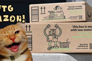 Free Forts for Felines!